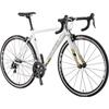 ルイガノ 17'CTR (TIAGRA 2x10s) ロードバイク